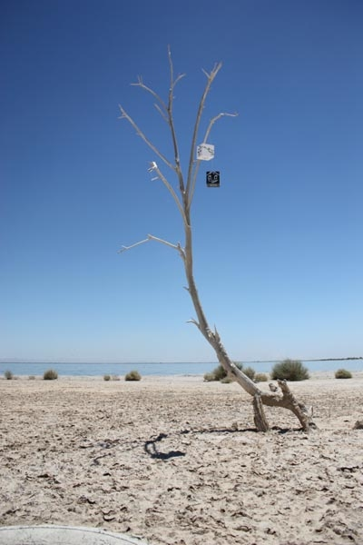 Installation at Salton Sea, CA